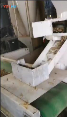 立式机试机出颗粒片段----华生机械