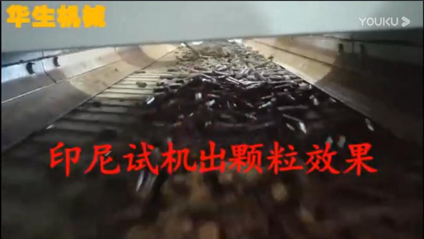 印尼颗粒生产视频